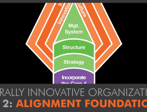 Alignment Foundation: Building a Naturally Innovative Organization™ Part 2