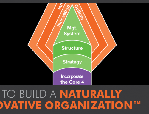 Building a Naturally Innovative Organization™: The Big Think High Performance Spearhead